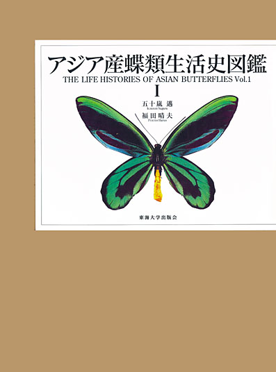 Natural History Of Birdwing Butterflies